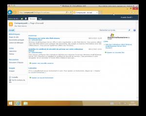 SBS 2011 Companyweb